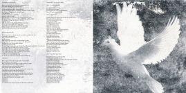 Her Silent Silhouette 'Brushstrokes' booklet